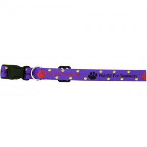 Custom Print Pet 10mm Collar