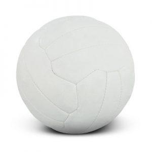 Branded Sports Balls